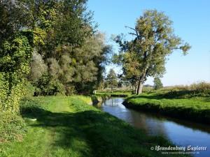 151011_Oderbruch-Wriezen_5