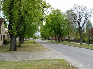 150502_Pretschen_5
